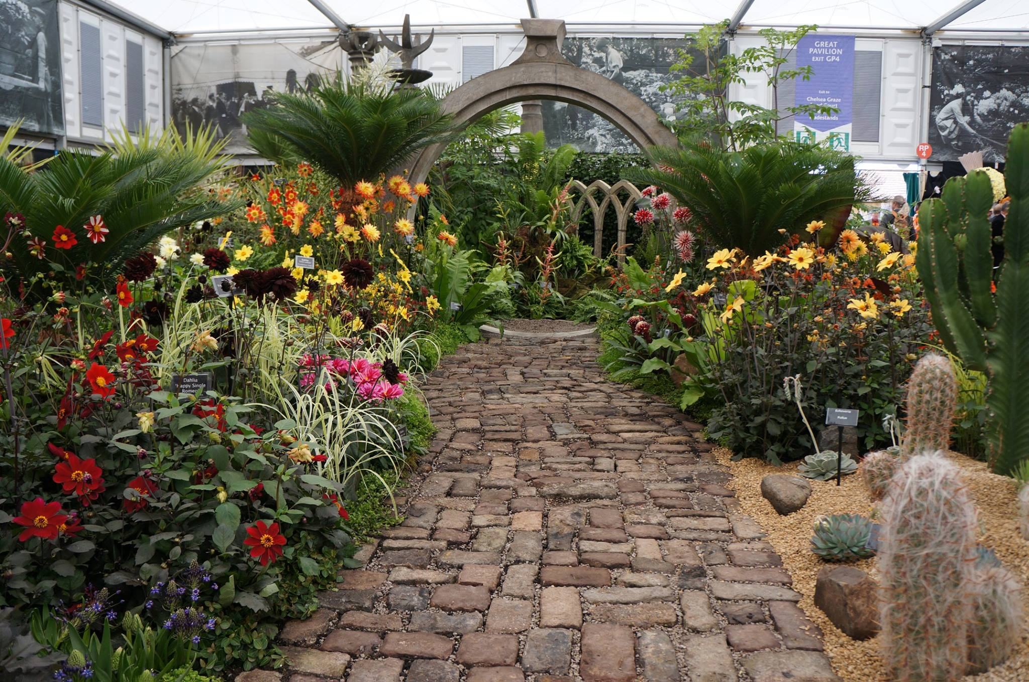 Jard n surrealista mexicano gana oro en el chelsea flower for Jardin expo 2015 liege